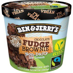 Ben & Jerrys Non Dairy Fudge Brownie Cup