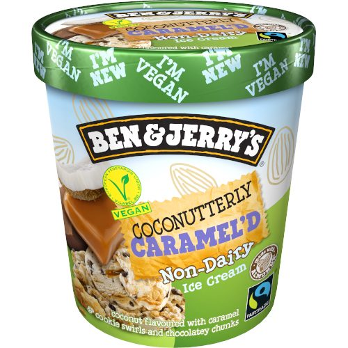 Ben & Jerry's NON Dairy Coconutterly Caramelised